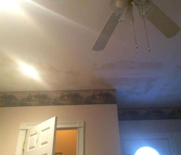 Where does mold grow? Before