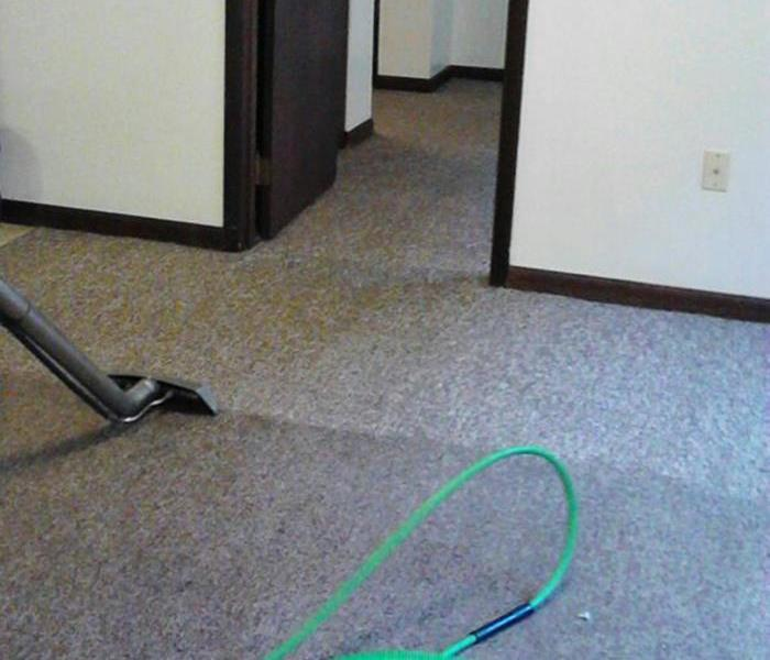 Carpet Cleaning in Ashland, KY Before
