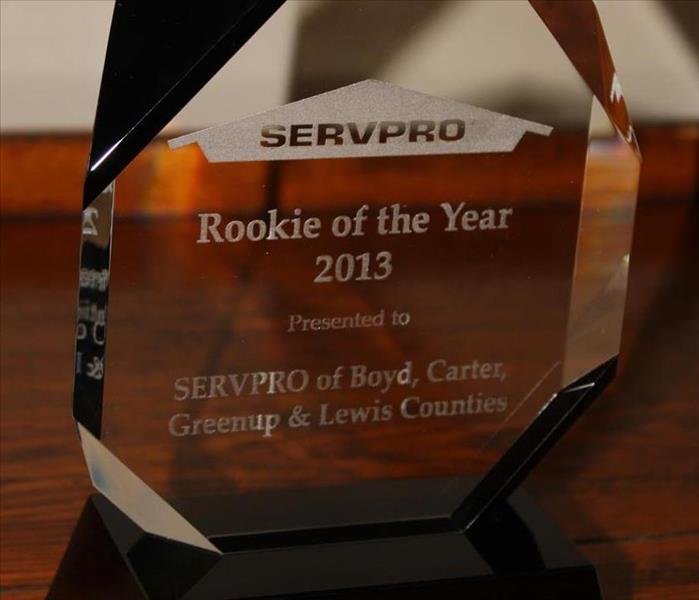 Rookie of the Year 2013