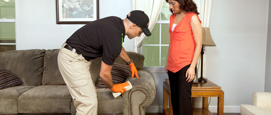 Ashland, KY carpet upholstery cleaning